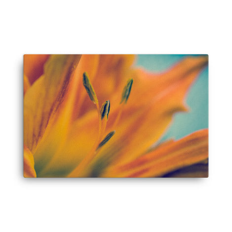 Mystical Tiger Lily Floral Nature Canvas Wall Art Prints