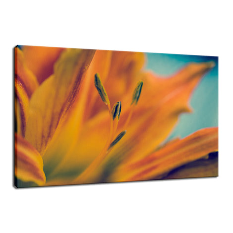 Mystical Tiger Lily Nature / Floral Photo Fine Art Canvas Wall Art Prints