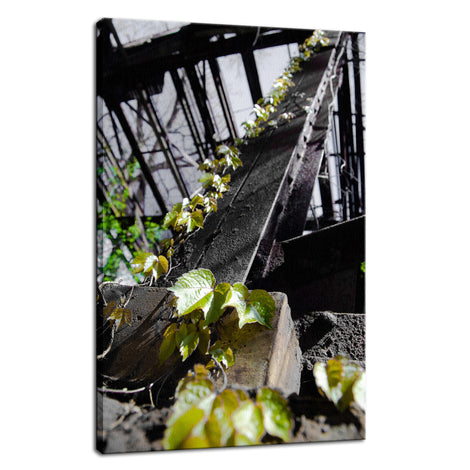 Nature Taking Over Botanical / Nature Photo Fine Art Canvas Wall Art Prints