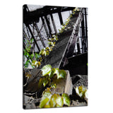 Nature Taking Over Botanical / Nature Photo Fine Art Canvas Wall Art Prints  - PIPAFINEART