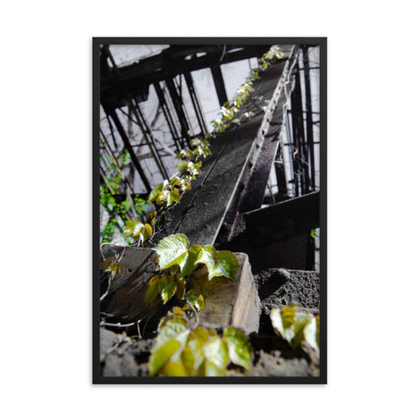 Nature Taking Over Botanical Nature Photo Framed Wall Art Print