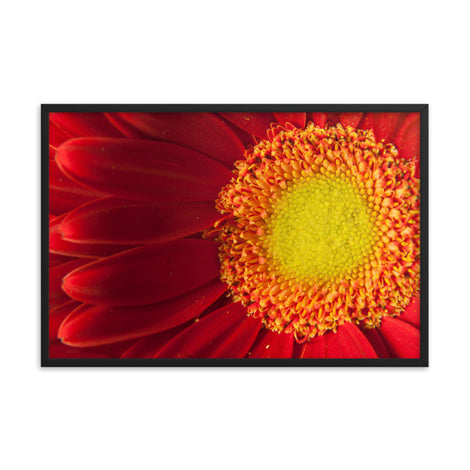 Nature's Beauty Floral Nature Photo Framed Wall Art Print