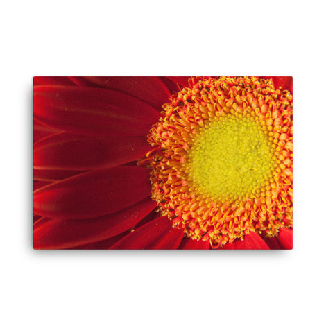 Nature's Beauty Nature Canvas Wall Art Prints