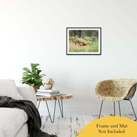 On The Move Animal / Wildlife Photograph Fine Art Canvas & Unframed Wall Art Prints - PIPAFINEART
