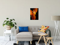"Orange Canna at Longwood Nature / Floral Photo Fine Art Canvas Wall Art Prints 20"" x 24"" / Fine Art Canvas - PIPAFINEART"