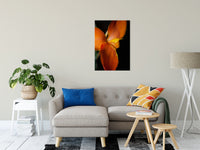 "Orange Canna at Longwood Nature / Floral Photo Fine Art Canvas Wall Art Prints 24"" x 36"" / Fine Art Canvas - PIPAFINEART"