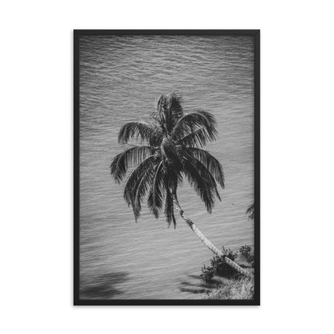 Palm Over Water Black and White Botanical Nature Photo Framed Wall Art Print