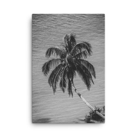 Palm Over Water Black and White Floral Nature Canvas Wall Art Prints