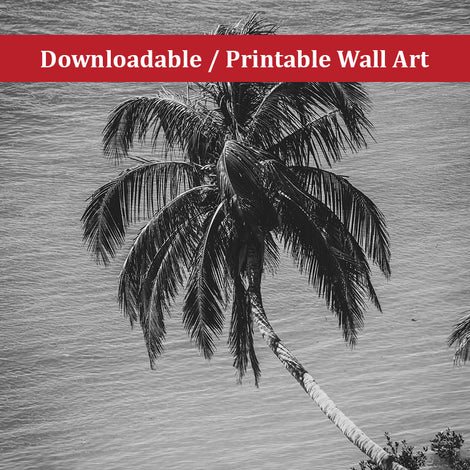 Palm Over Water Black and White Botanical Nature Photo DIY Wall Decor Instant Download Print - Printable