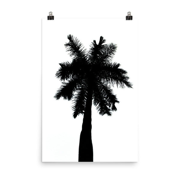 Palm Tree Silhouette on Pure White Botanical Nature Photo Loose Unframed Wall Art Prints  - PIPAFINEART