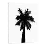 Palm Tree Silhouette on Pure White Nature / Botanical Photo Fine Art & Unframed Wall Art Prints - PIPAFINEART