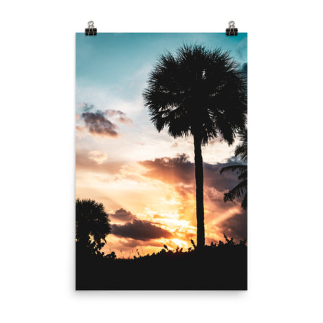 Palm Tree Silhouettes and Sunset Botanical Nature Photo Loose Unframed Wall Art Prints