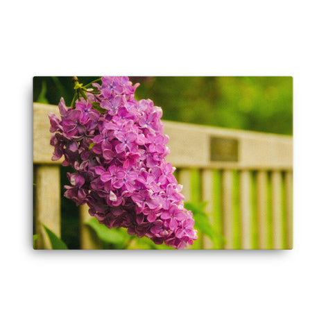 Park Bench with Lilac Floral Nature Canvas Wall Art Prints
