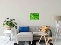 "Peaceful Greenery Botanical / Nature Photo Fine Art Canvas Wall Art Prints 16"" x 20"" / Fine Art Canvas - PIPAFINEART"