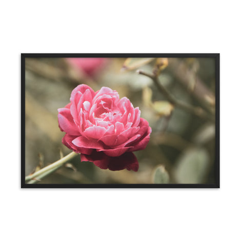 Perfect Petals Colorized Floral Nature Photo Framed Wall Art Print