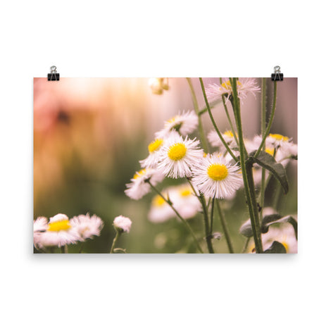 Philadelphia Fleabane Cluster Softened Floral Nature Photo Loose Unframed Wall Art Prints