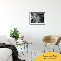 "Radial Sun Rays Abstract Photo Fine Art Canvas & Unframed Wall Art Prints 20"" x 24"" / Classic Paper - Unframed - PIPAFINEART"