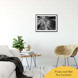 "Radial Sun Rays Abstract Photo Fine Art Canvas & Unframed Wall Art Prints 20"" x 30"" / Classic Paper - Unframed - PIPAFINEART"