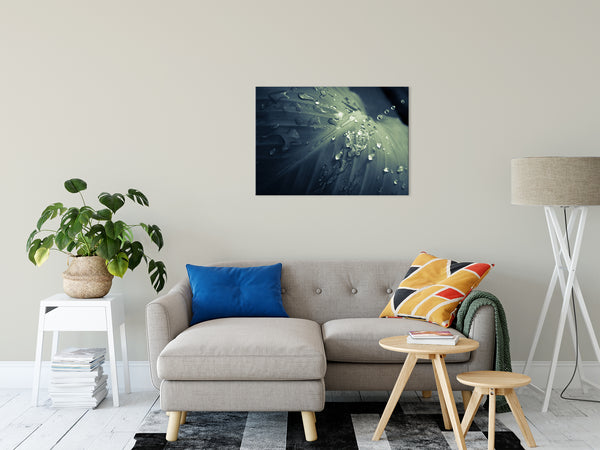 "Rain Dropping on Canna Leaf Plant Colorized Botanical Photo Fine Art Canvas Wall Art Prints 24"" x 36"" - PIPAFINEART"