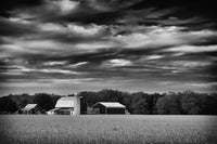 Red Barn in Golden Field Black and White Fine Art Canvas Wall Art Prints  - PIPAFINEART