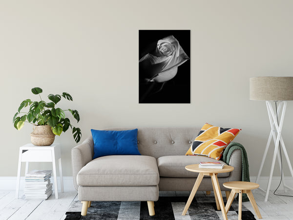 Floral Nature Photograph  Rose on Black - Fine Art Canvas - Home Decor Unframed Wall Art Prints