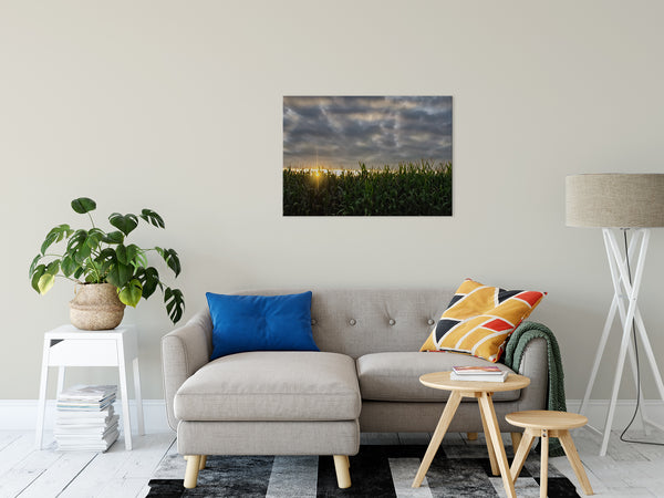Rural Landscape Photograph Rows of Corn - Fine Art Canvas - Home Decor Wall Art Prints Unframed