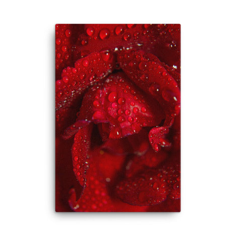 Royal Red Rose Floral Nature Canvas Wall Art Prints