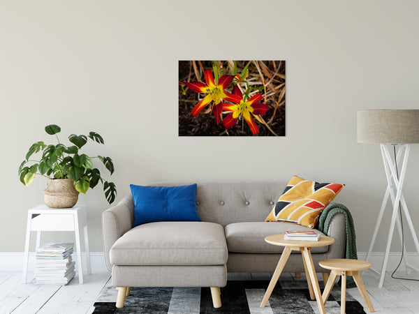 "Royal Sunset Lily Nature / Floral Photo Fine Art Canvas Wall Art Prints 24"" x 36"" - PIPAFINEART"