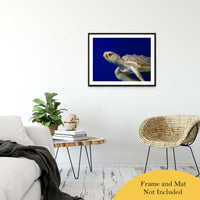"Sea Turtle 2 Animal / Wildlife Photograph Fine Art Canvas & Unframed Wall Art Prints 24"" x 36"" / Classic Paper - Unframed - PIPAFINEART"
