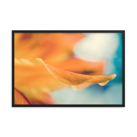 Serene Petals Of Life Floral Nature Photo Framed Wall Art Print