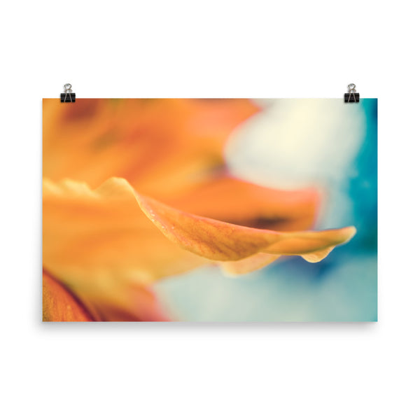 Serene Petals Of Life Floral Nature Photo Loose Unframed Wall Art Prints  - PIPAFINEART