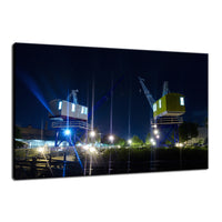 Shining Cranes Night Photo Fine Art Canvas Wall Art Prints  - PIPAFINEART