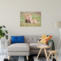 "Siblings Animal / Wildlife Photograph Fine Art Canvas & Unframed Wall Art Prints 24"" x 36"" / Canvas Fine Art - PIPAFINEART"