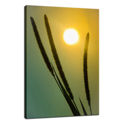 Silhouettes in Sunset Botanical / Nature Photo Fine Art Canvas Wall Art Prints