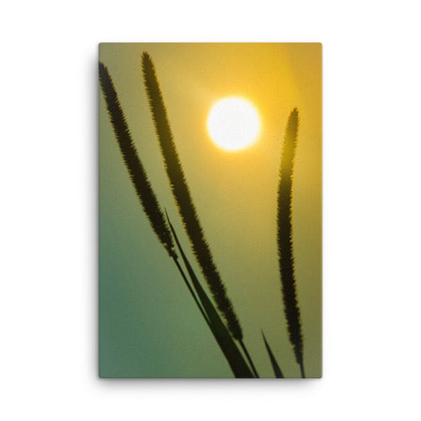 Silhouettes in Sunset Botanical Nature Canvas Wall Art Prints