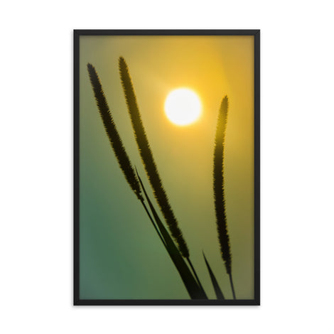 Silhouettes in Sunset Botanical Nature Photo Framed Wall Art Print