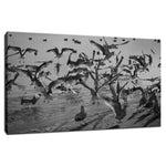 Skimming the Beach in Black and White Unframed Wall Art Prints & Fine Art Canvas Prints  - PIPAFINEART