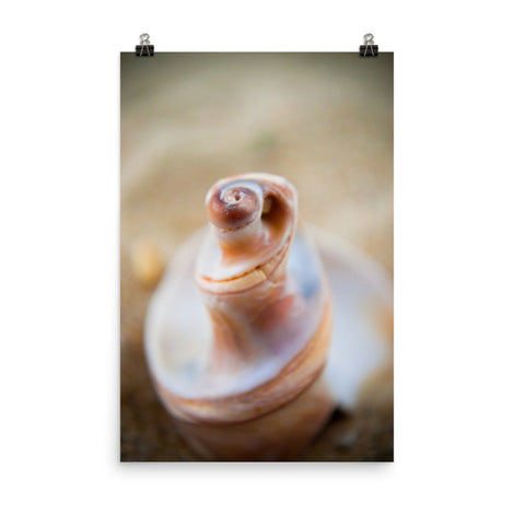 Smooth Erosion Coastal Nature Photo Loose Unframed Wall Art Prints