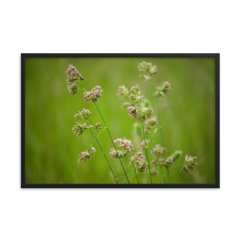 Softened Fields Botanical Nature Photo Framed Wall Art Print
