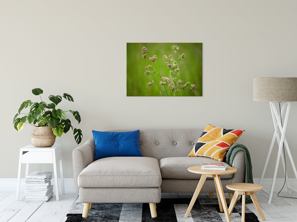 Botanical Nature Photograph Softened Fields - Fine Art Canvas - Home Decor Unframed Wall Art Prints