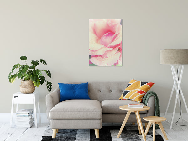 Floral Nature Photograph Softened Rose - Fine Art Canvas - Home Decor Unframed Wall Art Prints