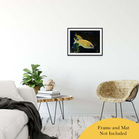 "Spotted Fish Animal / Wildlife Photograph Fine Art Canvas & Unframed Wall Art Prints 20"" x 24"" / Classic Paper - Unframed - PIPAFINEART"