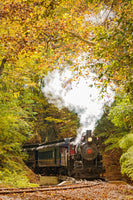 Steam Train with Autumn Foliage Rural Fine Art Canvas Wall Art Prints  - PIPAFINEART