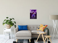 "Stigma of Iris Nature / Floral Photo Fine Art Canvas Wall Art Prints 16"" x 20"" / Fine Art Canvas - PIPAFINEART"