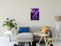 "Stigma of Iris Nature / Floral Photo Fine Art Canvas Wall Art Prints 20"" x 24"" - PIPAFINEART"