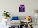 "Stigma of Iris Nature / Floral Photo Fine Art Canvas Wall Art Prints 20"" x 30"" - PIPAFINEART"