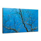 Streaking Tree Abstract Photo Fine Art Canvas & Unframed Wall Art Prints  - PIPAFINEART