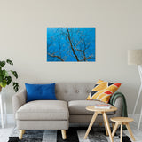 "Streaking Tree Abstract Photo Fine Art Canvas & Unframed Wall Art Prints 24"" x 36"" / Fine Art Canvas - PIPAFINEART"