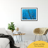 "Streaking Tree Abstract Photo Fine Art Canvas & Unframed Wall Art Prints 24"" x 36"" / Classic Paper - Unframed - PIPAFINEART"