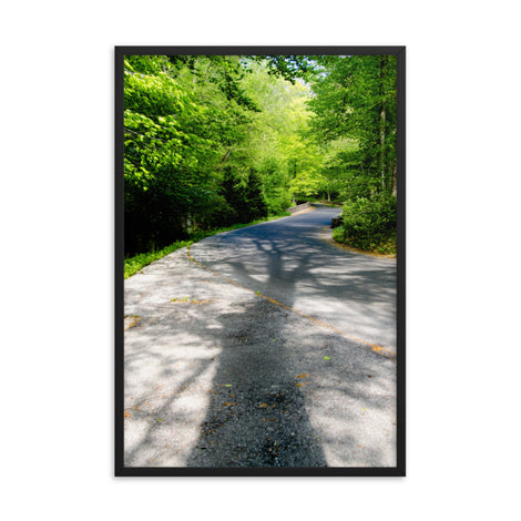 Summer Shadows Botanical Nature Photo Framed Wall Art Print